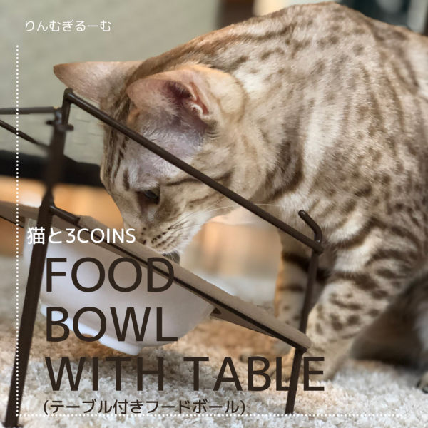 FOOD BOWL WITH TABLE(テーブル付きフードボール)