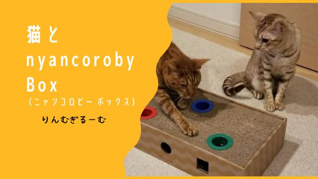 猫とニャンコロビーボックス