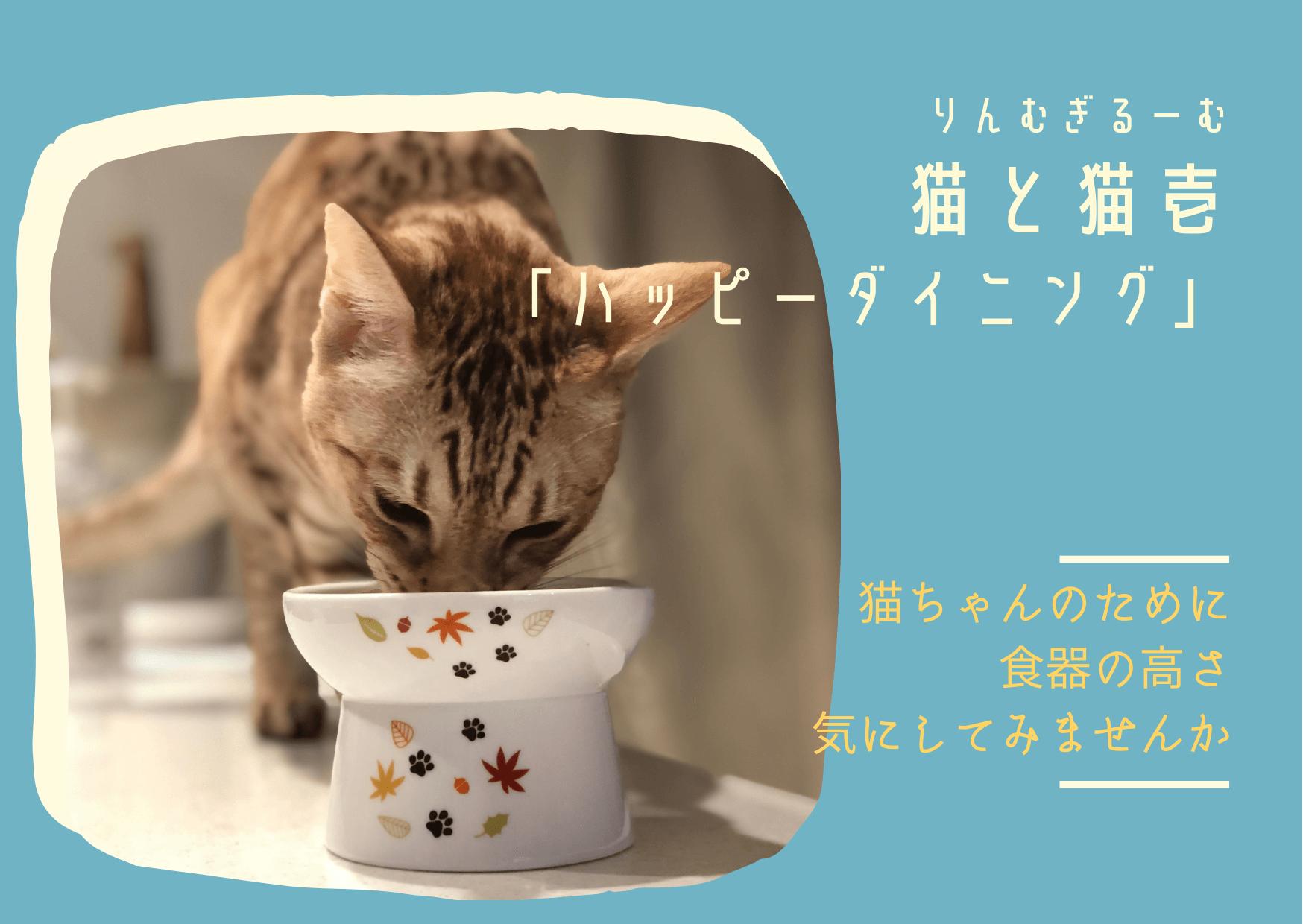 猫と猫壱 「ハッピーダイニング」